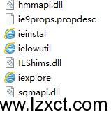 IEXPLORE打开程序时出错